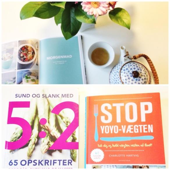 Bøger fra Politikens Forlag