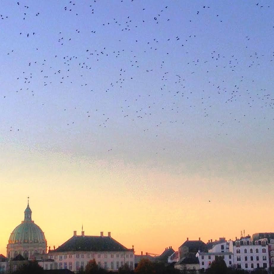 Smuk himmel ved Operahuset